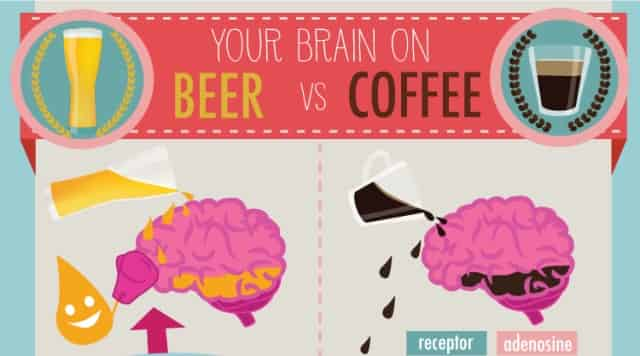 how-beer-and-coffee-affect-your-brain-one-cikarilan
